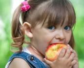 alimentacao de verao para criancas